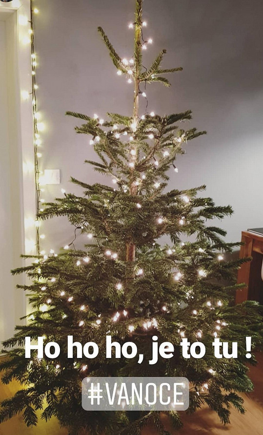 Už doma zdobí stromeček.