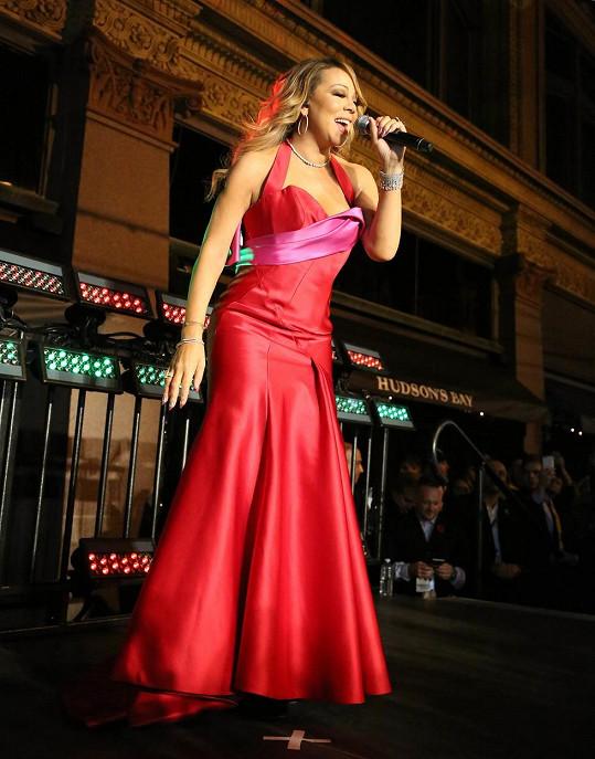 Zpěvačka inkasovala za kratičký koncert milión dolarů.