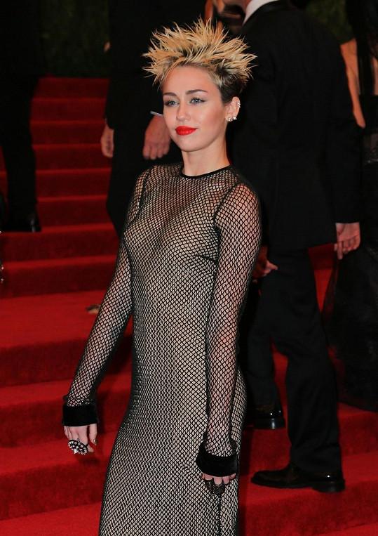 I přesto, že byly šaty neprůsvitné, na mnohé upozorňovaly.