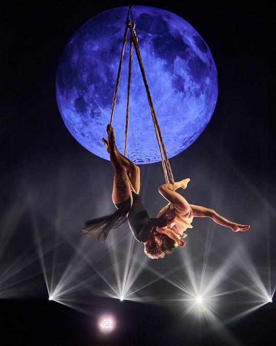 Akrobatické vystoupení s dcerou Willow nemělo chybu.