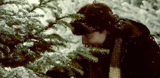 Josef Polášek jako tatínek v populární vánoční reklamě. Poprvé se vysílala v roce 2003.