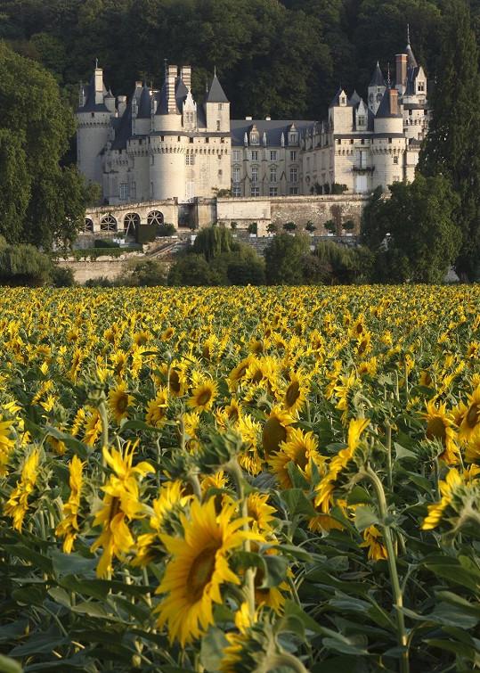 Zámek se nachází v blízkosti Versailles, kde se údajně dvojice chtěla brát původně.