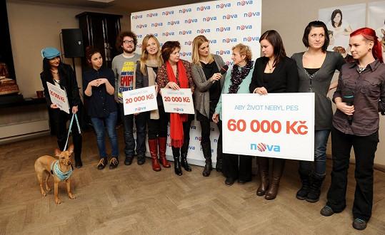 Díky Patricii se vybralo 60 tisíc korun pro psí útulky.