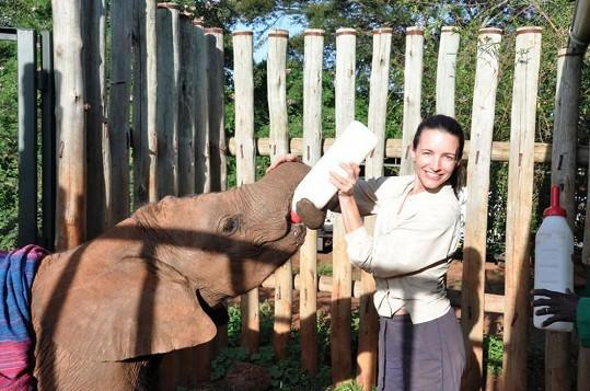 Kristin Davis jako sloní máma