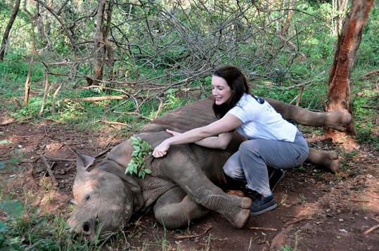 Kristin Davis bojuje za záchranu slonů a nosorožců.
