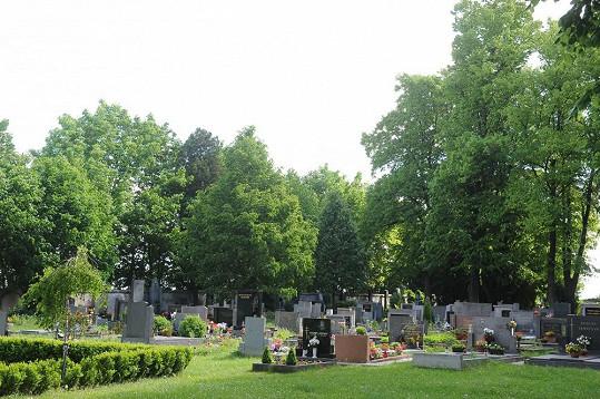 Na tomhle hřbitově v Uhřiněvsi nejspíš najde Iveta Bartošová místo posledního odpočinku.