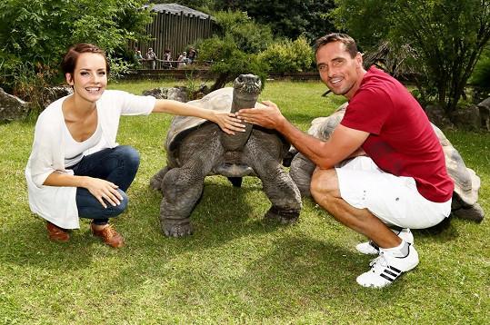 Želva se nechala i pohladit.