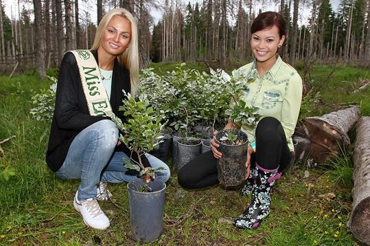 Monika Leová a Tereza Fajksová při sázení stromků na Šumavě.