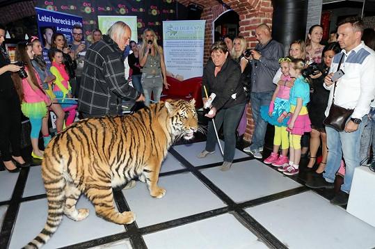 Pak se křtil klip, jehož patronem byl stejný tygr...