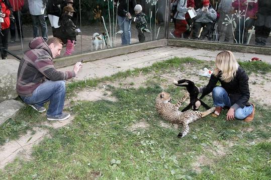 Tereza si hrála s gepardem, Jiří ji fotil.