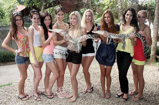 Krokodýli měli svázané tlamičky a tak se holky nebály.