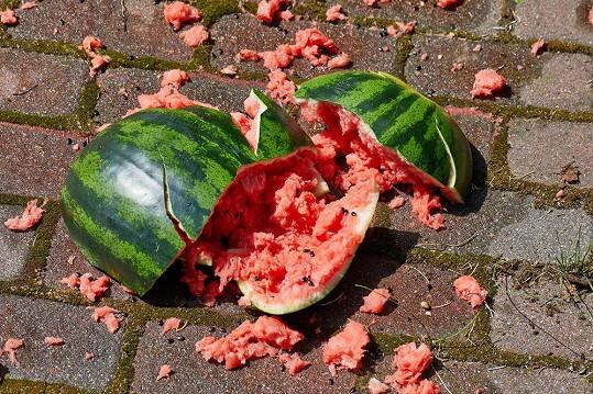 Tři melouny Skotka stiskem stehen rozdrtila za 13,13 sekund.