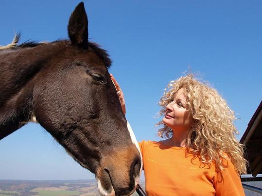 Miluje koně.