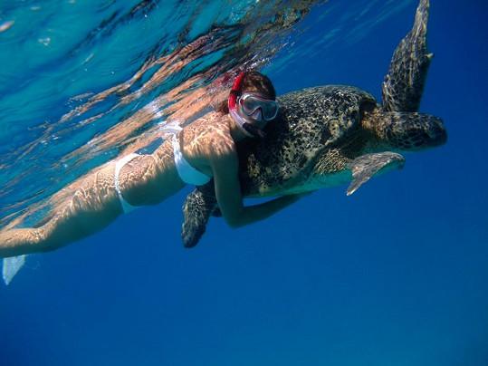 Smatanová dovádí s obrovskou mořskou želvou.
