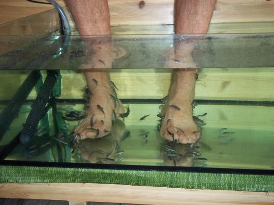 Nohy Martina a rybičky v akci
