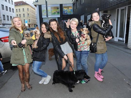 Svoje psíky na premiéru kromě Petry přivedly i holky z 5Angels.