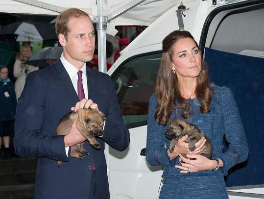 William a Kate si pochovali štěňátka.