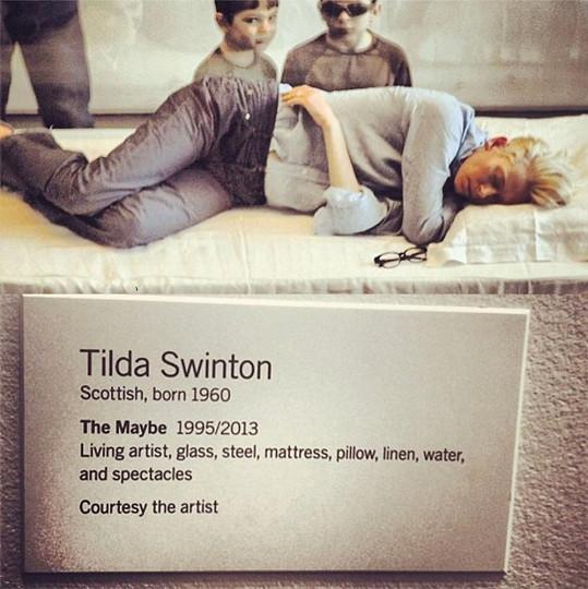 Jako každý jiný exponát má Tilda svou tabulku s popiskem.