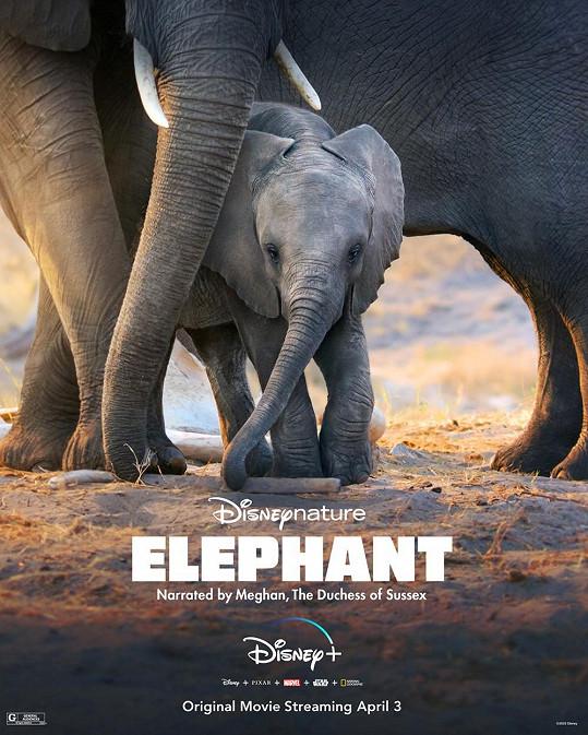 Propůjčila hlas dokumentu Elephant.