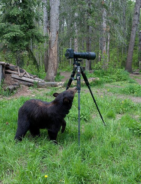 Mládě zkoumá fotoaparát.