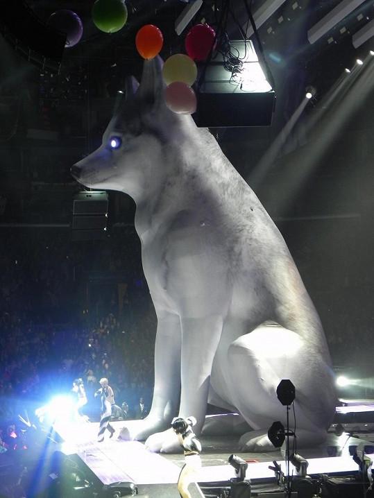 Zpěvačka nyní vystupuje s gigantickou napodobeninou Floyda.