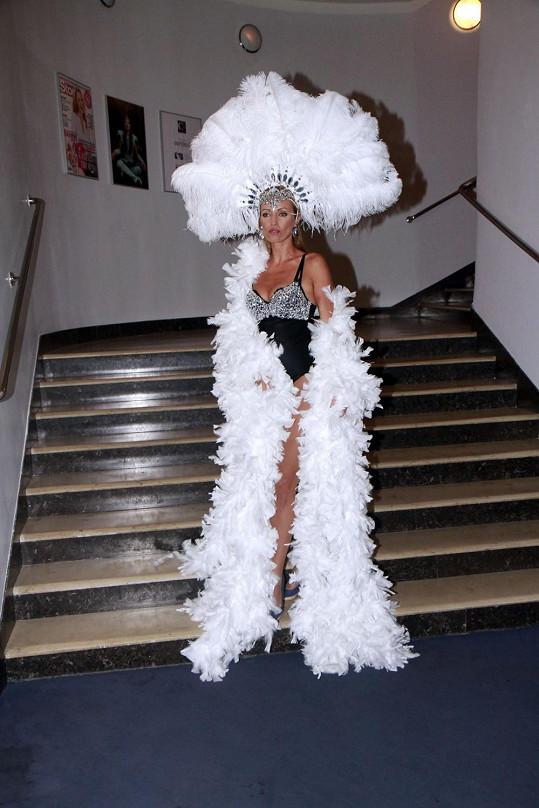 Brožová se nebála obléknout do sexy kostýmu.