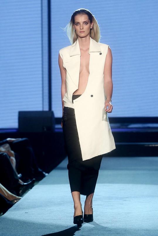 Denisa předváděla pro řadu světových návrhářů včetně Versaceho, Chanel, Karla Lagerfelda, Fendi, Christiana Diora, Johna Galliana a Valentina.