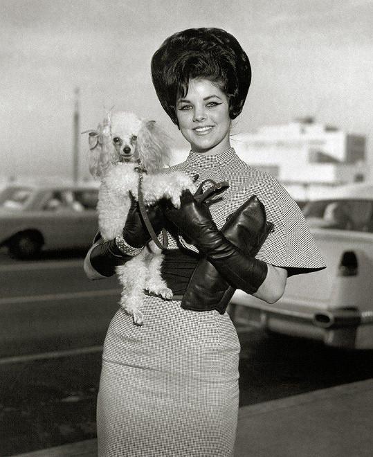 Priscilla Presley v roce 1965