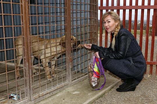 Kateřina Kaira Hrachovcová přinesla plné tašky krmiva.