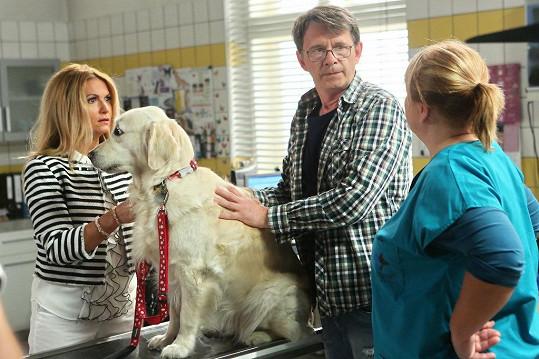 Yvetta bude hrát v seriálu televize Prima s názvem Krejzovi.