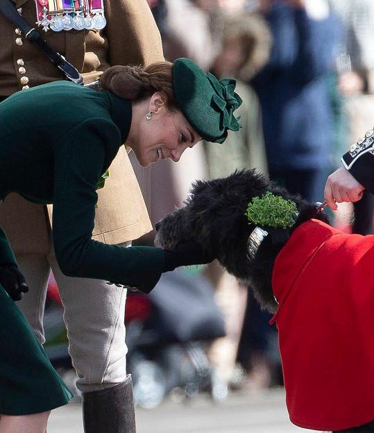 Vévodkyni zaujal pes.