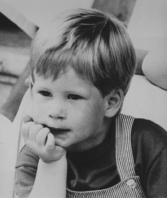 Harry byl už jako malý chlapec velmi roztomilý.