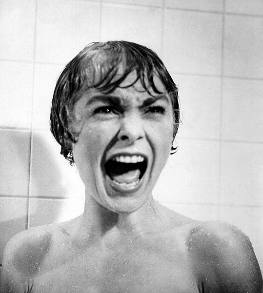 Janet Leigh se v roce 1960 proslavila hororem Psycho.