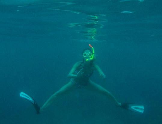 A na Seychelách je podmořský život úžasný.