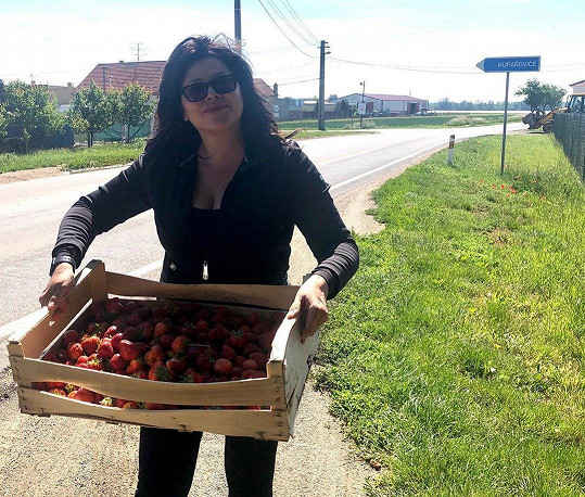 Ilona Csáková sbírala jahody. A moc jí to slušelo.