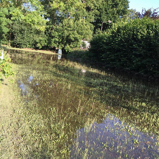 Voda zaplavila zahradu.