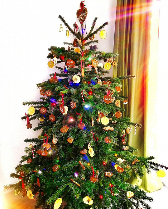 Stromeček letos rodina zdobila jen 'home-made' dobrotami.