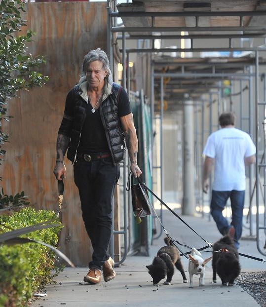 Společnost v těžké chvíli dělali herci jeho čtyři psí kamarádi.
