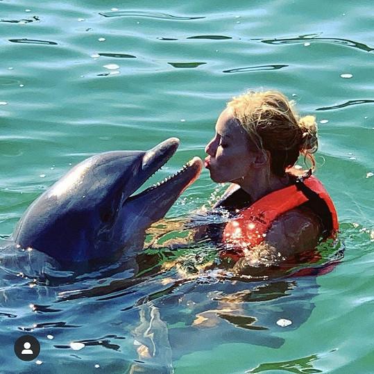... pusinkování těchto mořských savců je ovšem trnem v oku ochráncům přírody.