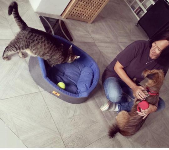 Fenku už přivezla domů a seznamuje ji se svojí kočkou.