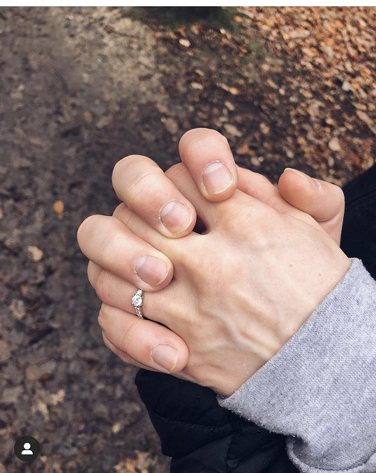 O ruku ji požádal v prosinci.