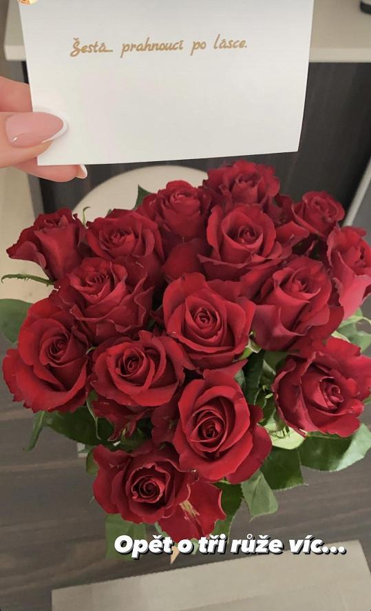 Hance chodí domů pugety růží. Sedmá přišla na Valentýna.