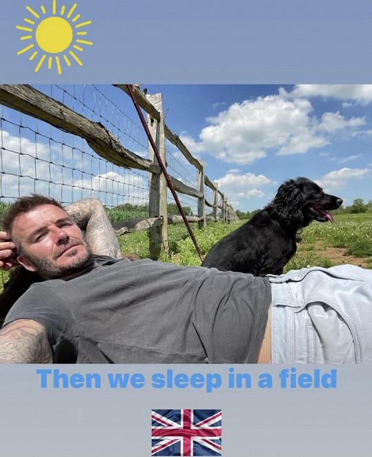 Poté se uvelebí na trávě se svými mazlíčky.