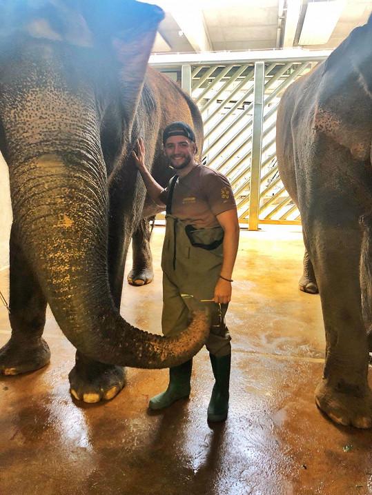 Honza měl ze slonů nejdříve pořádný respekt.