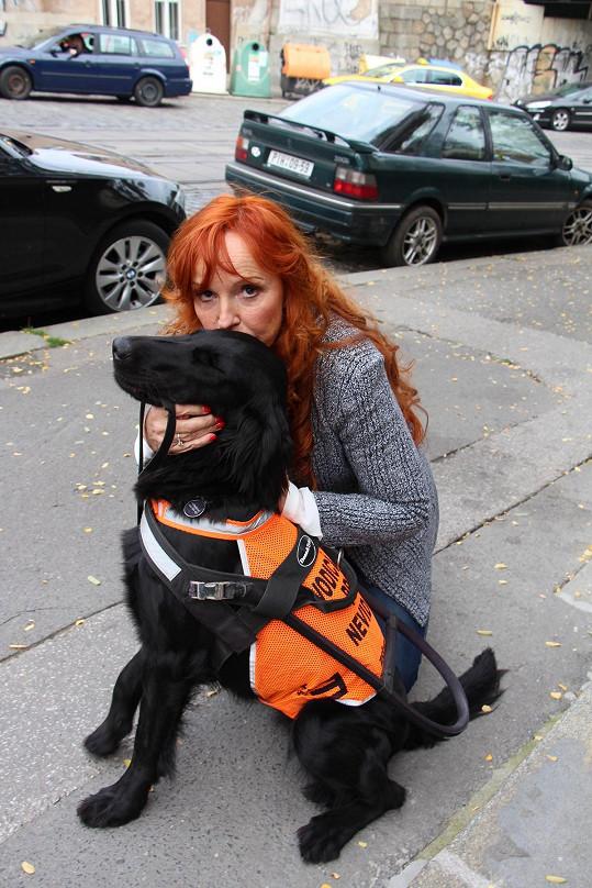 Ta zrakově postiženým obstarává asistenční psy.