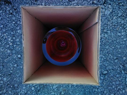 Dar pro Karla Gotta je už hotový a zabalený v krabici. Kvůli překvapení ale škola tají, oč jde.