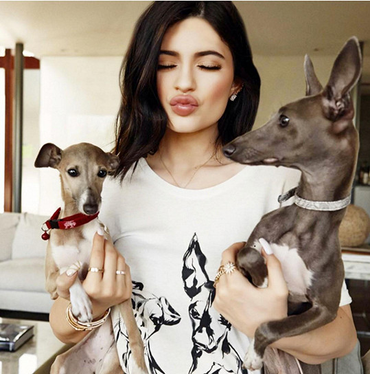 Kylie Jenner se svými pejsky Bambim a Normanem