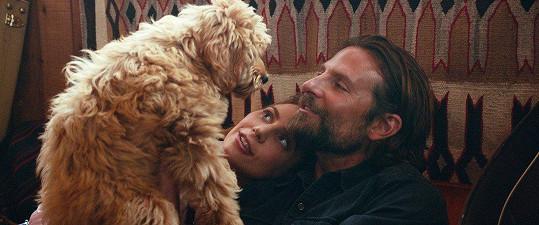Bradley Cooper a Lady Gaga jako Jackson Maine a Ally ve filmu Zrodila se hvězda.