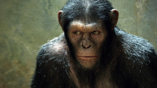 Ve filmech o Planetě opic hrál Caesara.