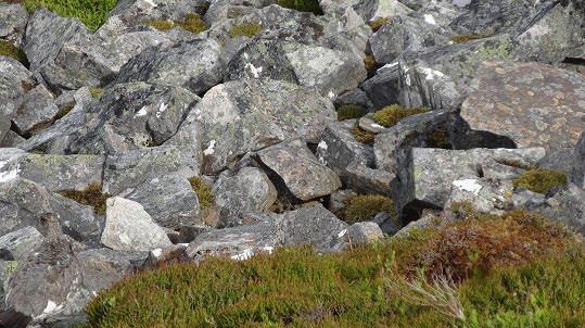 I s hromadou kamení se dá splynout.